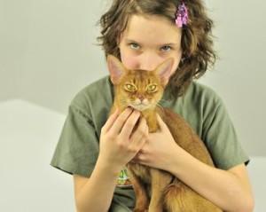 Абиссинская кошка и ребенок